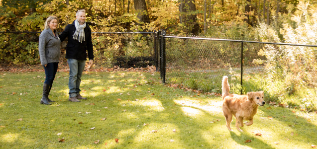 Photo of a dog running free in the off-leash dog park at Viamede Resort in the Kawarthas.
