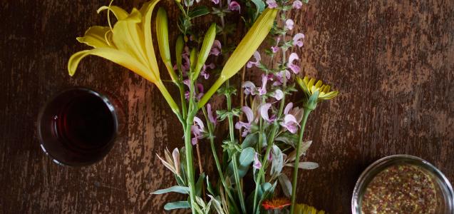 viamede-banner-springculinary