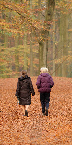 two women and dog walking in autumn forest