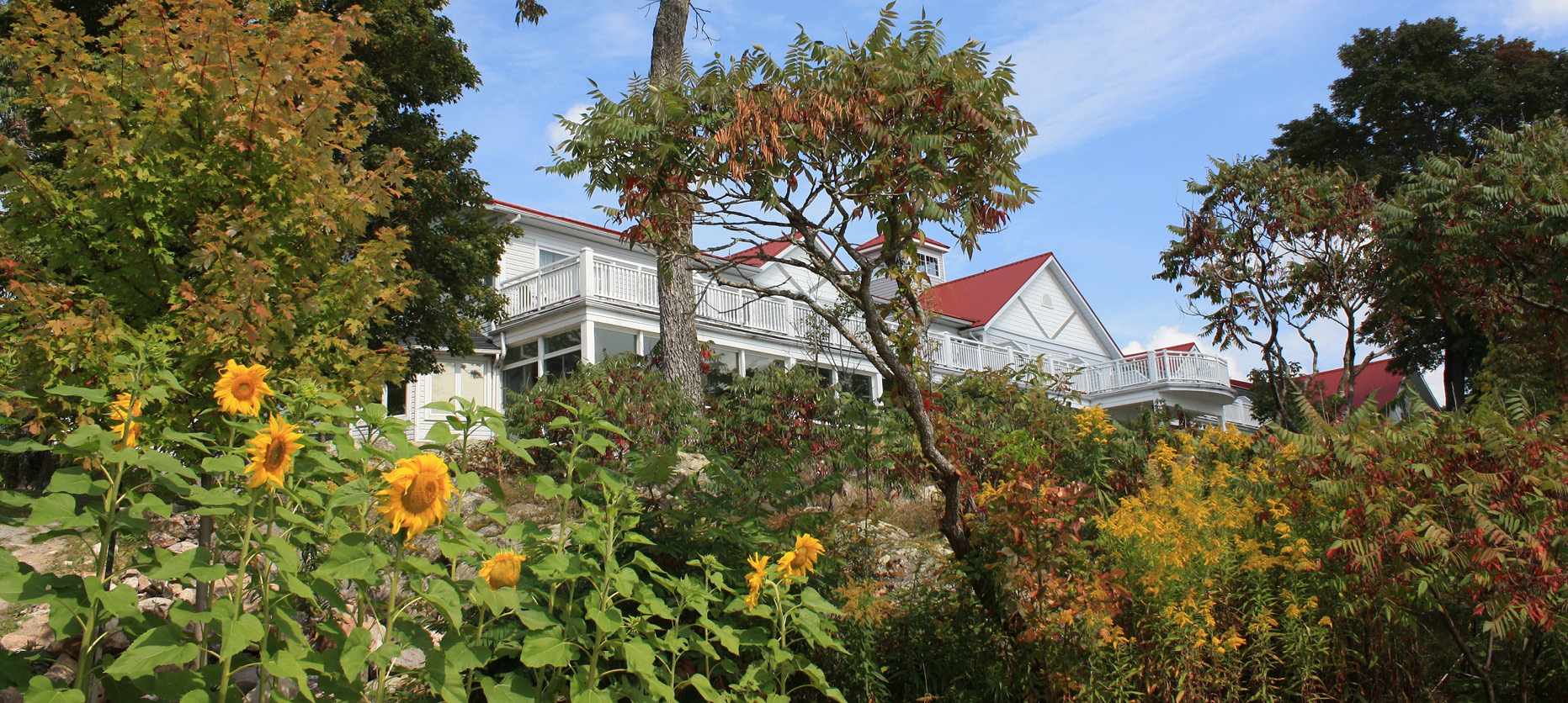View of main Viamede Resort building with wildflowers and shrubs in the foreground.