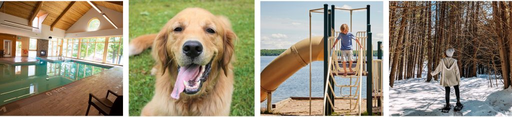 Photo collage showing various activities; indoor pool, beach playground, happy golden retriever, winter snowshoeing