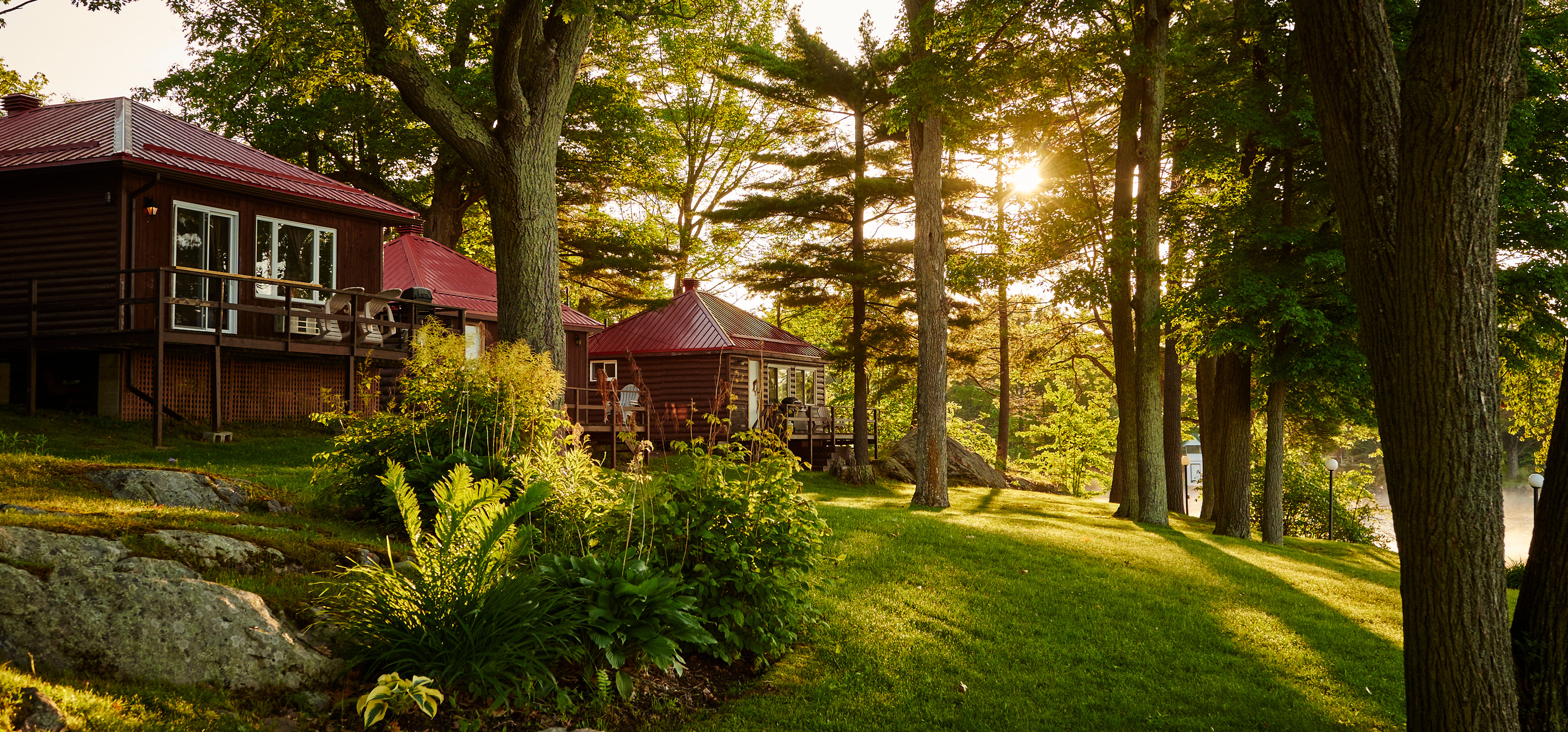 Viamede Resort cottages at sunset surrounded by trees and gardens