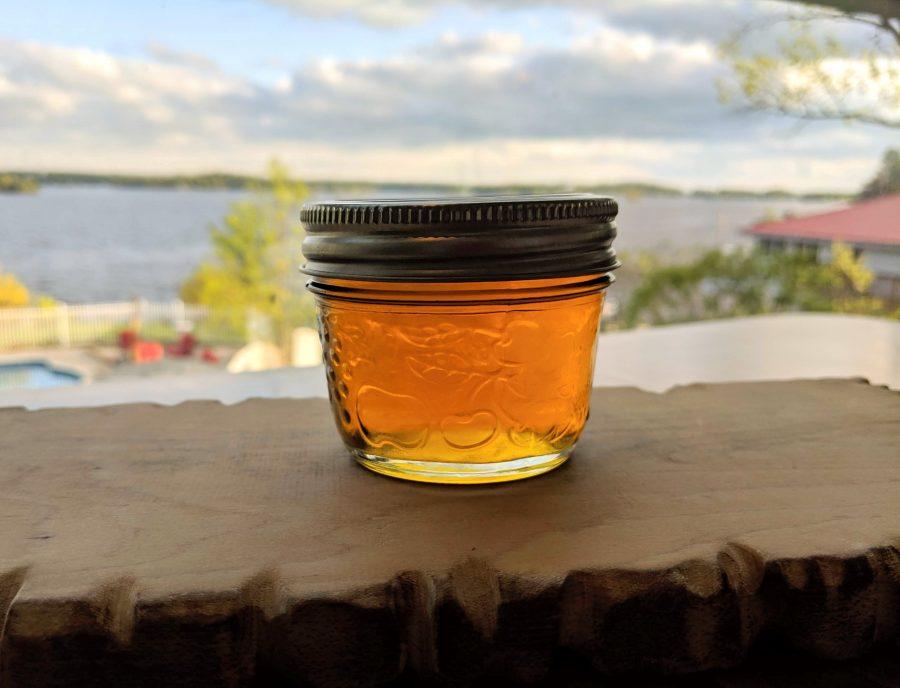 Dandelion Marmalade recipe; foraging dandelions